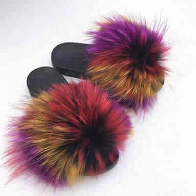 Raccoon-Fur-Slides on home page